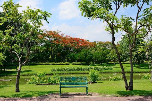 As cadeiras para descansar no parque público têm árvores e céu como o fundo.