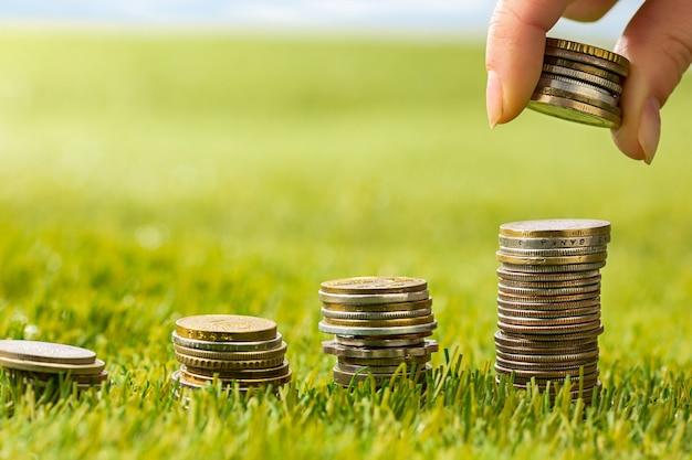As colunas de moedas na grama