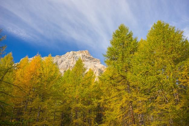 As cores do outono nos alpes