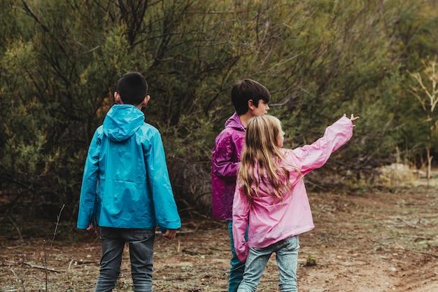 As crianças estão em uma aventura e acampar andam e brincam na floresta
