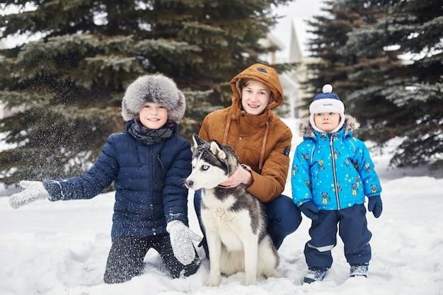 As crianças saem e brincam com cães husky no inverno.