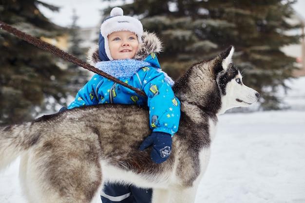 As crianças saem e brincam com cães husky no inverno