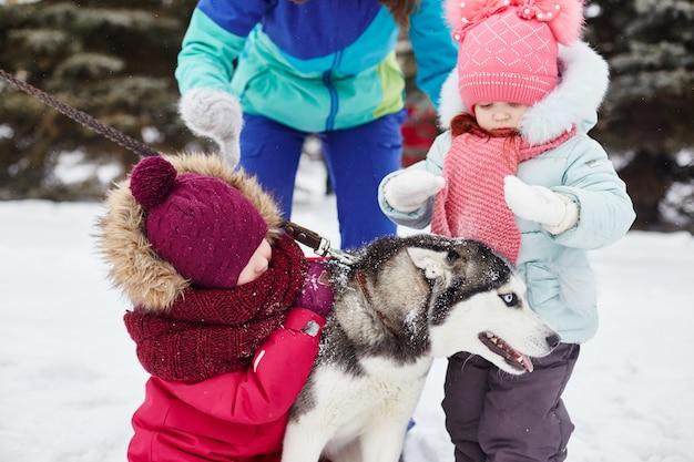As crianças saem e brincam com o cão husky no inverno
