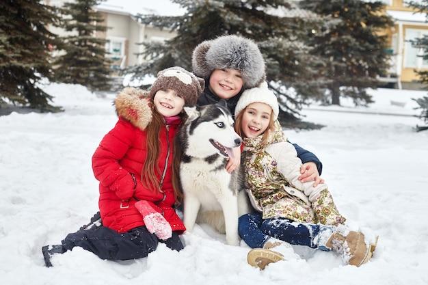 As crianças sentam-se na neve e acariciam o cão husky. as crianças saem e brincam com o cão husky no inverno. passeio no parque no inverno, alegria e diversão, cachorro husky de olhos azuis. rússia, sverdlovsk, 28 de dezembro de 2017