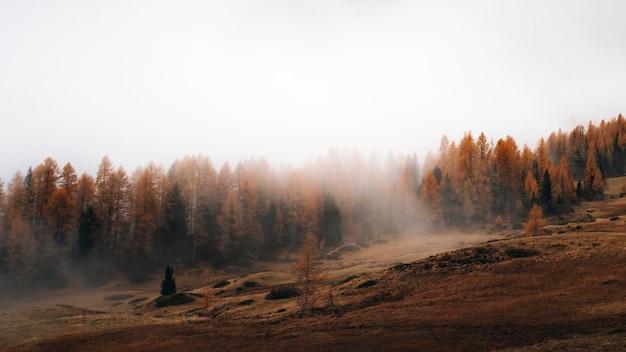 As dolomitas envoltas pela névoa durante o outono