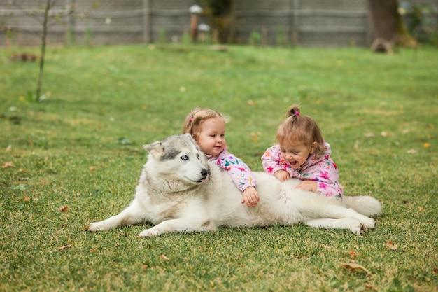 As duas meninas bebê brincando com cachorro contra grama verde