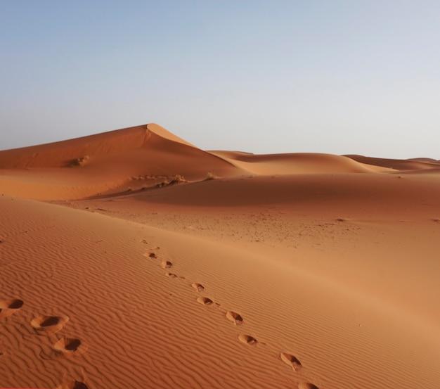 As dunas de erg chebbi, marrocos