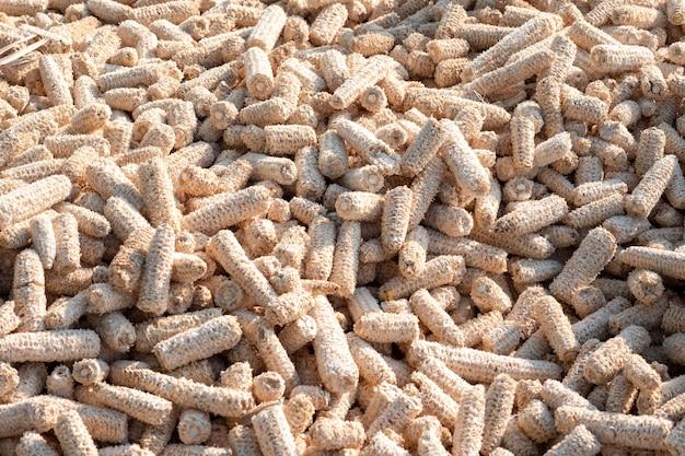 As espigas de milho empilham-se no chão.