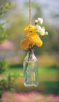 As flores de calêndula em uma garrafa de vidro pendurado