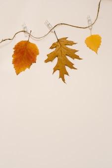 As folhas caídas outono penduram em uma linha e em um pregador de roupa. coloque plana, copie o espaço. o conceito da temporada.
