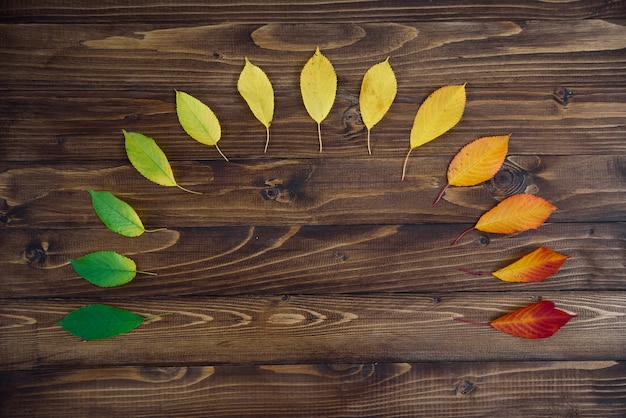 As folhas de outono dispostas em um semicírculo passam de verde para vermelho em um fundo de madeira. o conceito de mudar a estação.