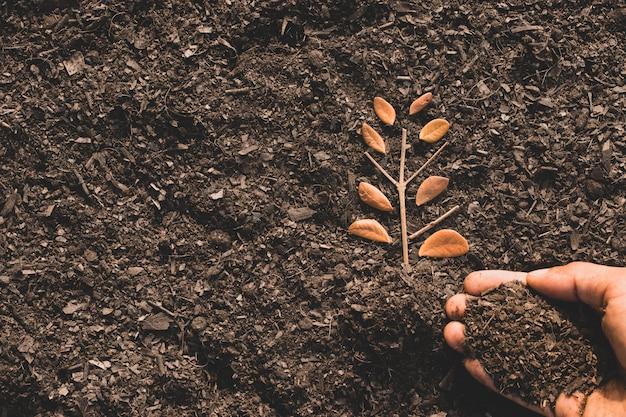 As folhas no solo solto e com as mãos de um homem derramando o solo, a idéia de plantar árvores para o meio ambiente.
