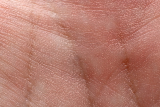 As linhas na palma da mão se fecham. conceito de quiromancia.