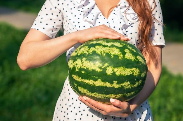 As mãos da jovem mulher estão mostrando melancia inteira sobre fundo verde natureza