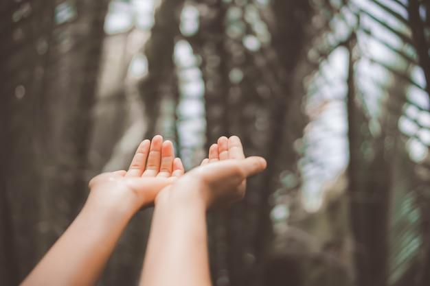 As mãos da mulher colocam juntas como rezar na frente da natureza verde