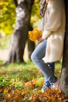 As mãos da mulher segurando um lindo ramo de folhas brilhantes de bordo de outono no parque em um dia ensolarado