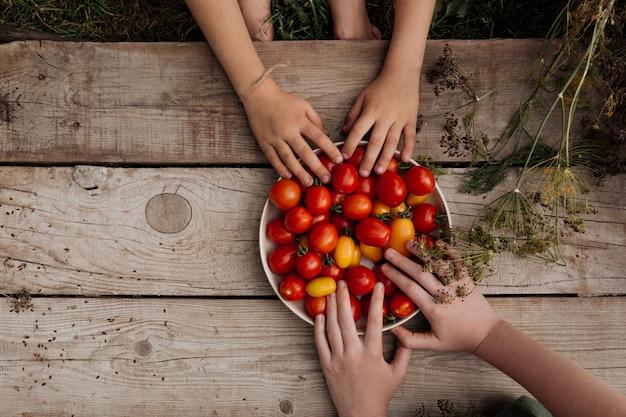 As mãos das crianças alcançam um prato de tomates vermelhos que está sobre uma mesa de madeira.