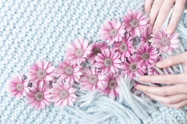 As mãos das mulheres esquematizar as flores de crisântemo rosa em um tapete azul com uma franja de lã merino