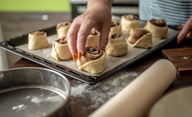As mãos das mulheres estão colocando delicadamente os pães de canela crus em uma assadeira antes de assar
