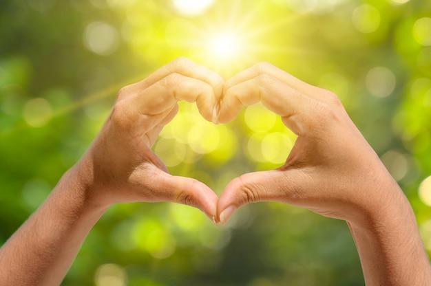 As mãos de mulheres e homens têm a forma de um coração com a luz do sol passando pelas mãos