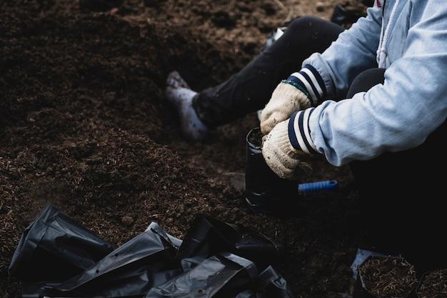 As mãos do agricultor colocaram a casca da mistura de solo no saco plástico preto do viveiro para preparar a muda