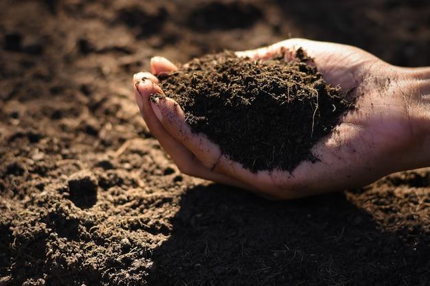 As mãos dos agricultores estão escolhendo o melhor solo para o plantio.
