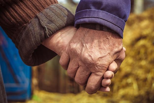 As mãos dos idosos, camponeses.