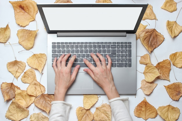 As mãos estão digitando em um teclado de laptop com folhas caídas. trabalho on-line, freelancer. vista do topo
