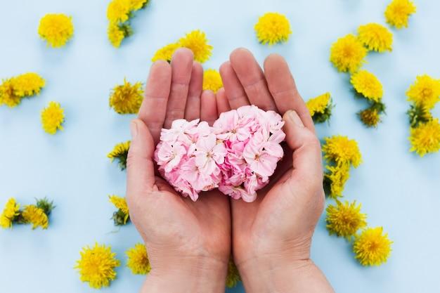 As mãos estão segurando flores brilhantes em um azul pastel