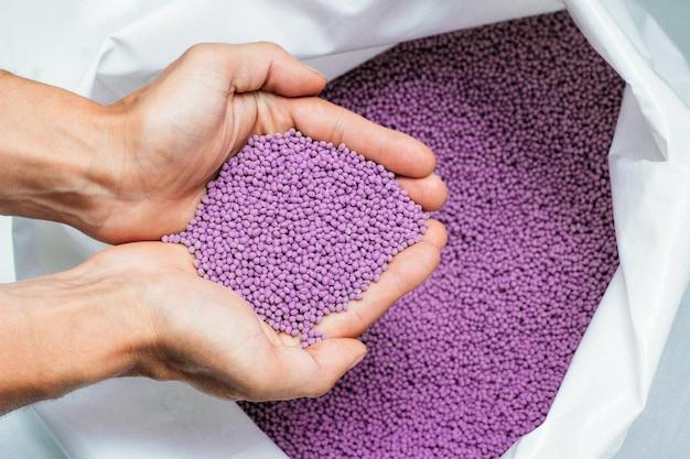 As mãos seguram ou tocam grânulos de plástico biodegradáveis, grânulos de corante de polímero plástico de cor púrpura transparente.