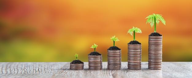 As moedas são empilhadas em forma de gráfico com a muda de uma árvore em crescimento