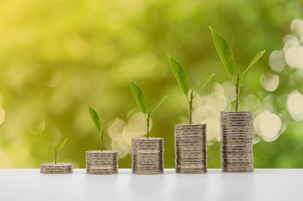 As moedas se acumulam em coluna com crescimento de árvores que representam economia de dinheiro ou ideia de planejamento financeiro para economia.