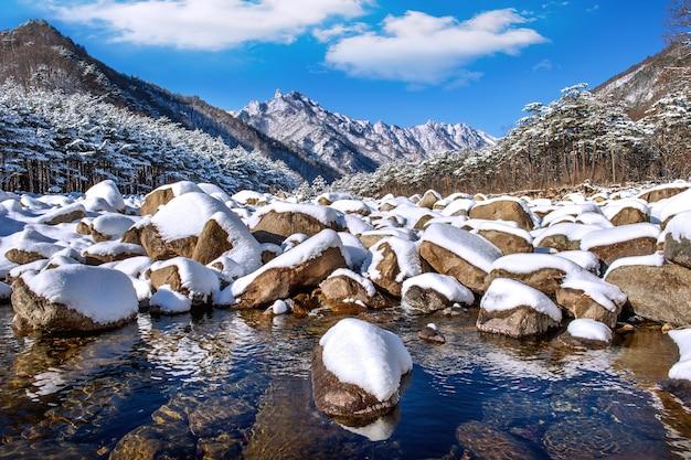 As montanhas seoraksan são cobertas por neve no inverno, coreia do sul