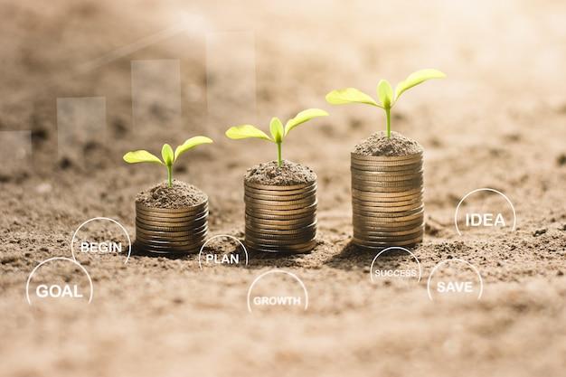As mudas estão crescendo nas moedas, pensando no crescimento financeiro.