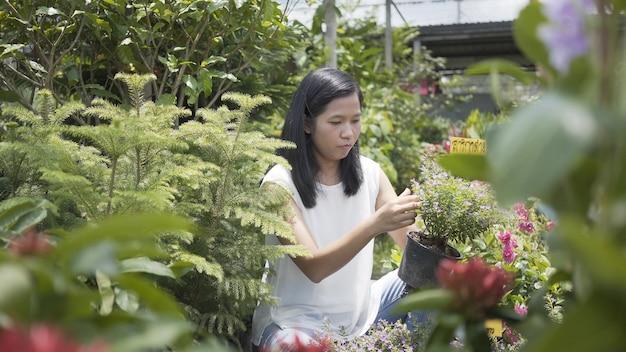 As mulheres asiáticas importam-se flores, árvore na loja do caramanchão.
