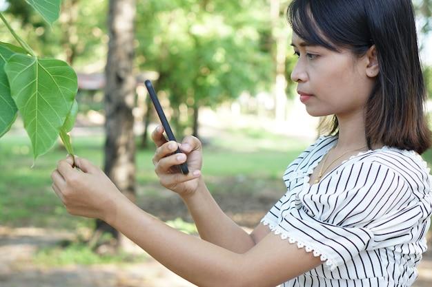 As mulheres asiáticas usam smartphones para tirar fotos de árvores, o conceito de amor pelo mundo.