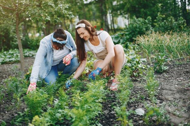 As mulheres bonitas trabalham em um jardim
