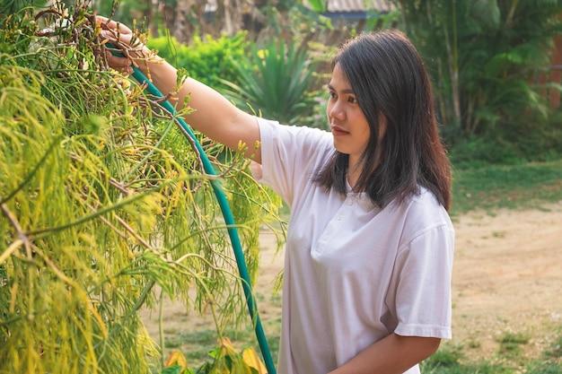 As mulheres estão felizes com regar as plantas.