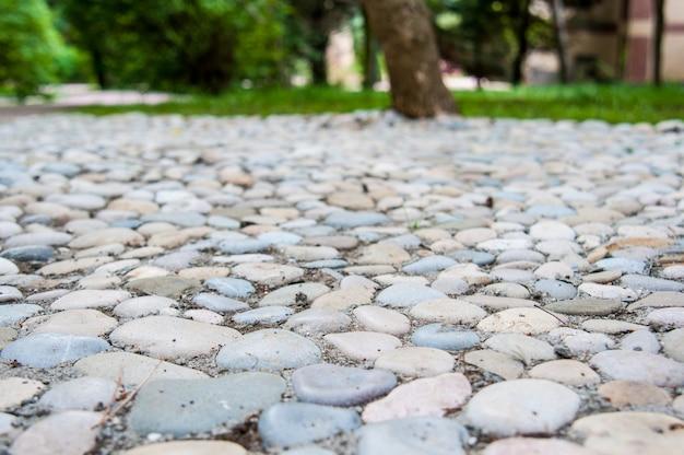 As pedras multicoloridas no caminho do jardim