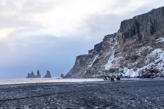 As pessoas andam a cavalo em uma praia negra de vik e veem as ondas do inverno no oceano atlântico