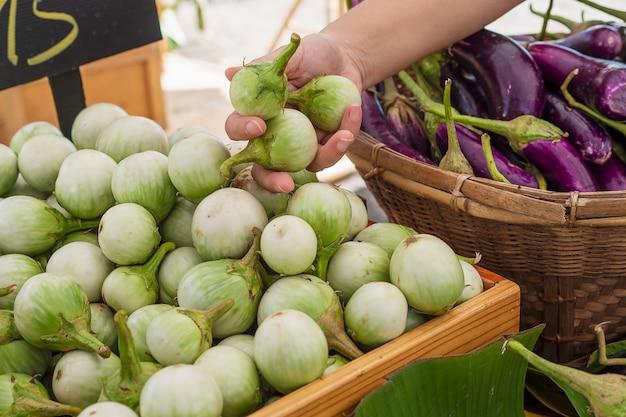 As pessoas compram berinjela fresca no mercado local - cliente no conceito de mercado de produtos hortícolas