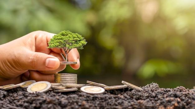 As plantas que crescem na pilha de dinheiro incluem as mãos de investidores