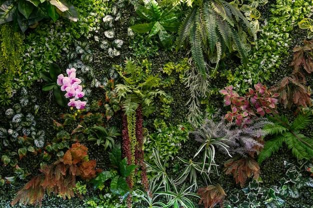 As plantas verdes decoram na parede. folhas verdes na parede