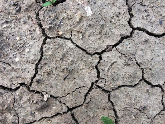 As rachaduras secas na terra têm uma textura.