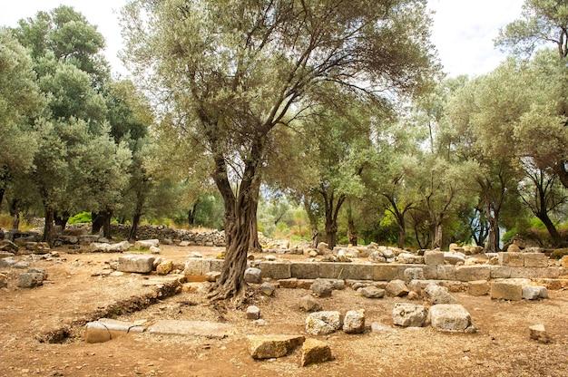 As ruínas de uma antiga cidade carian na ilha de sedir. mugla, turquia