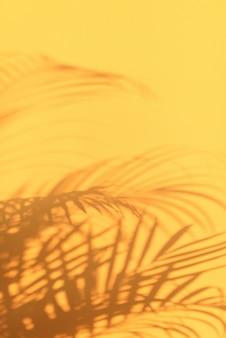 As sombras da palma tropical saem no fundo amarelo pastel da parede.