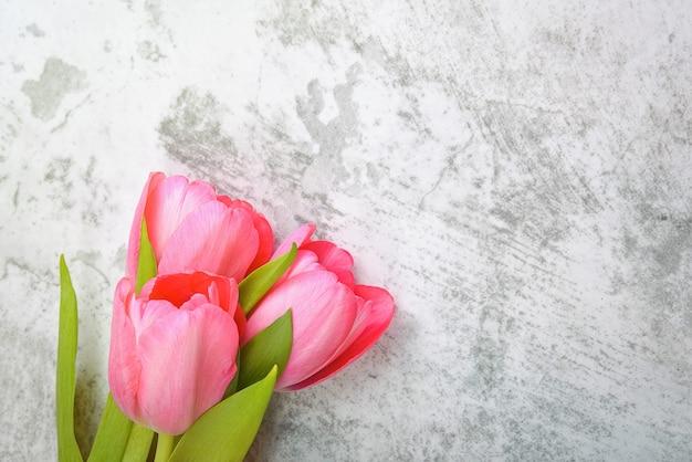 As tulipas são brilhantes, frescas, cor de rosa em um plano de fundo cinza claro.
