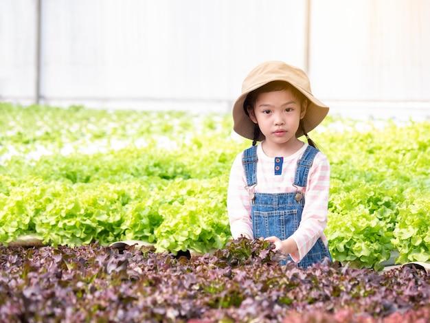 Asain menina bonitinha aprendendo a cultivar legumes na casa verde hidropônica. garoto e horta.