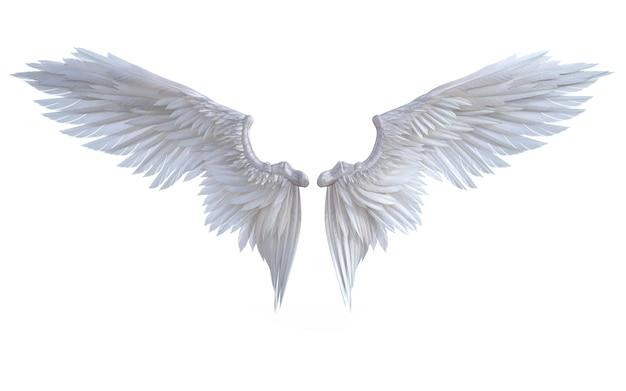 Asas de anjo de ilustração 3d, asa branca plumagem isolado no fundo branco