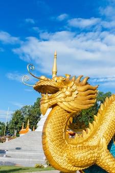 Asiática de dragão